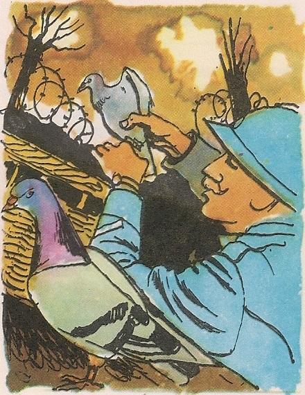 Голуб писмоноша