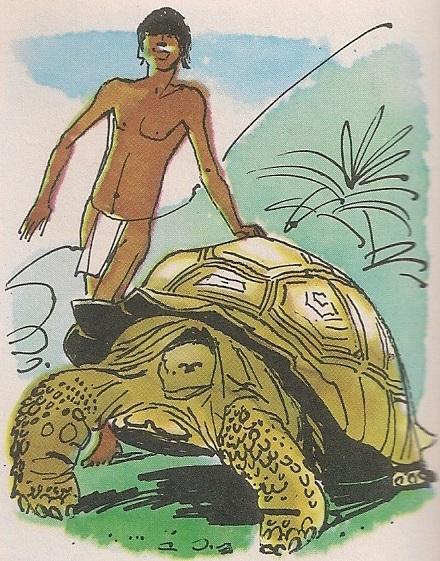 Корњаче са Галапагоса