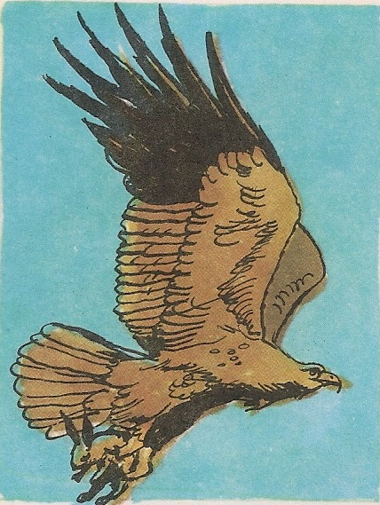 Краљевски орао