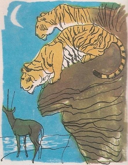 Крволочни тигар