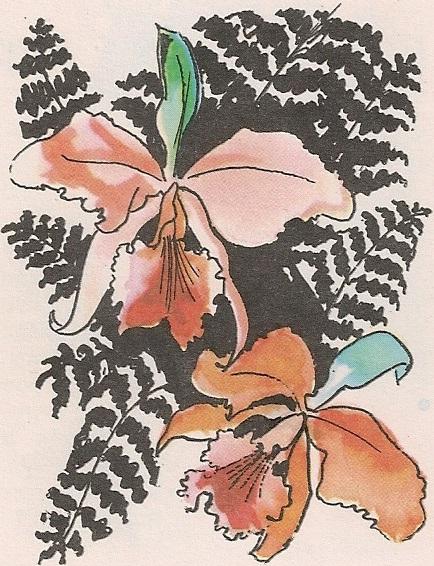Лепотице орхидеје