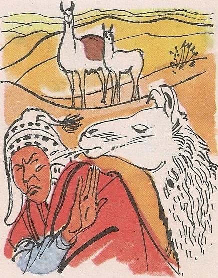 Пргава лама