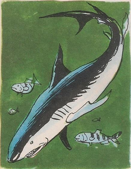 Риба пилот