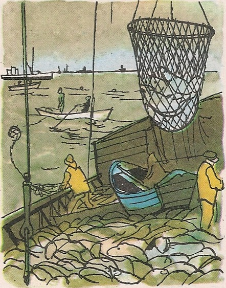 Рибља јата Њуфаундланда