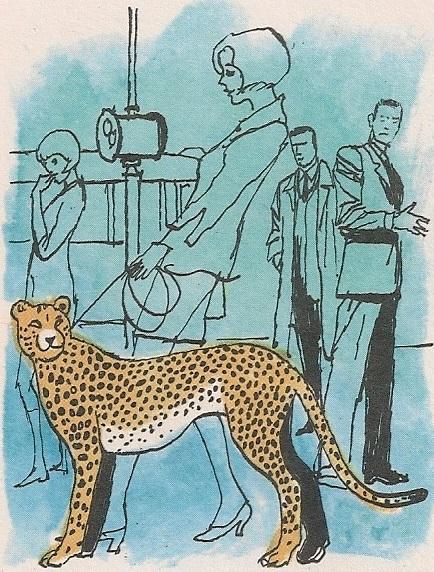 Умиљати гепард