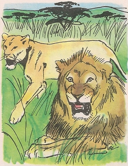 Цар животиња