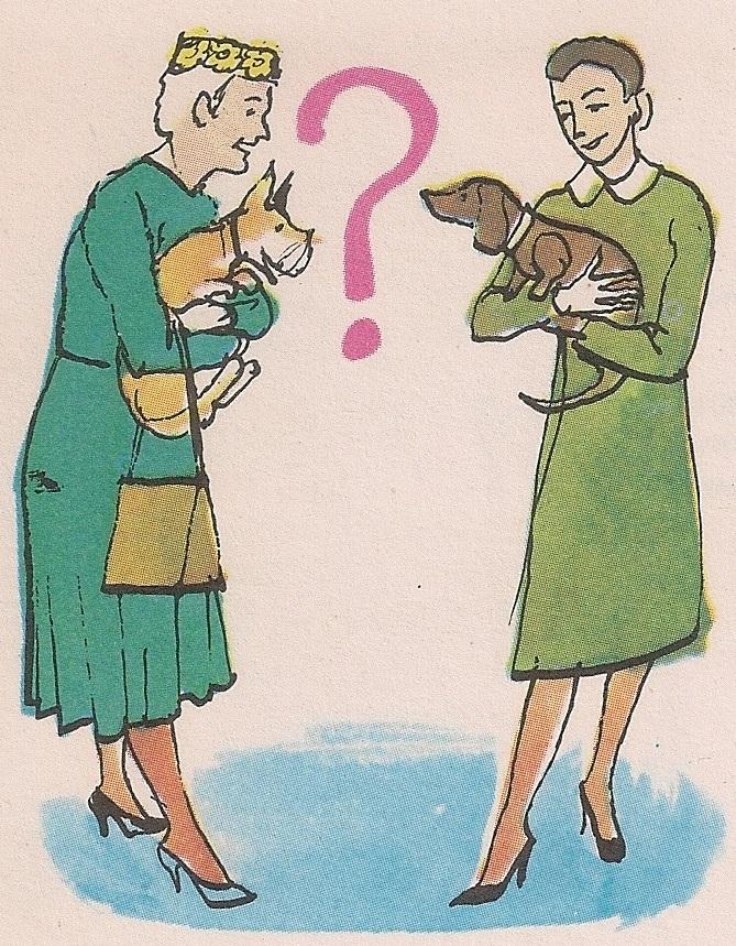 Зашто животиње не говоре?