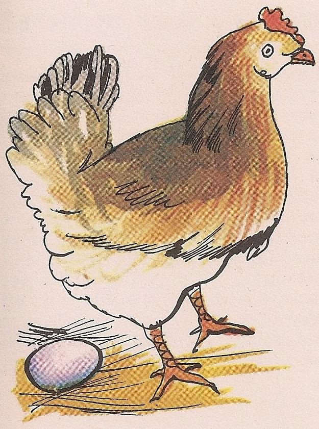Носећи јаја, кокошка се брине за своје потомство.