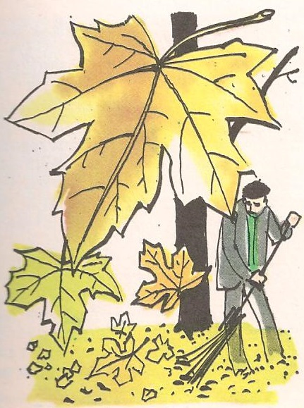 Зашто лишће у јесен мења боју?