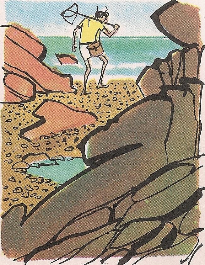 Зашто нема песка на свим плажама?