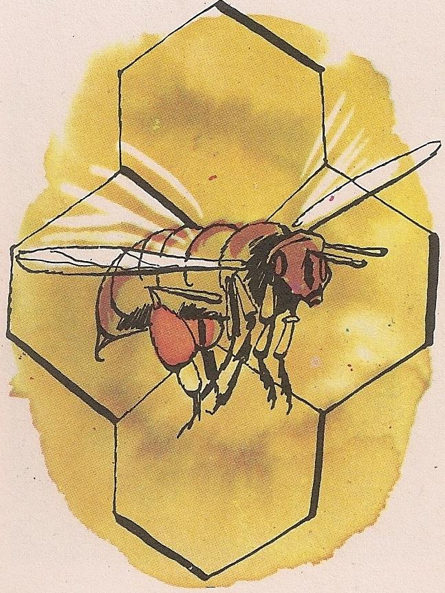 Пчеле су инсекти опнокрилци