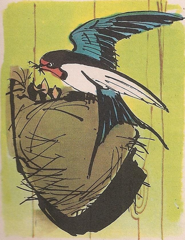 Ласта и њено гнездо