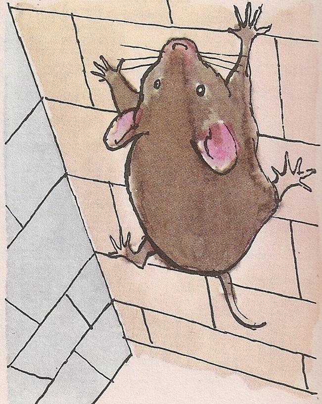 Како се мишеви пењу уза зидове?
