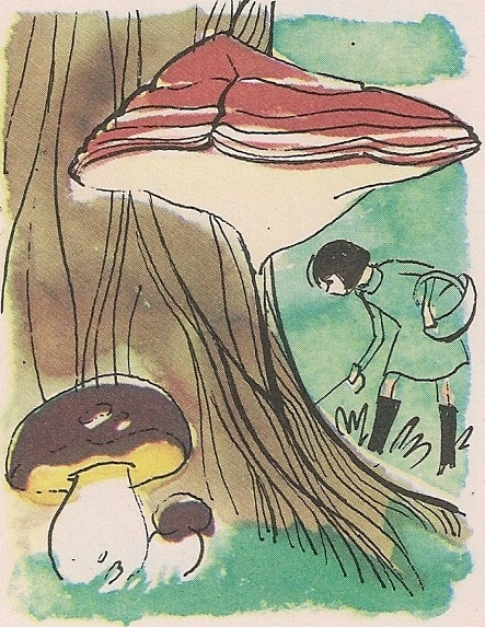 печурка